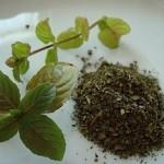 Mint Pepper